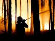 Beim Feuer im Nordosten Deutschlands brannte eine Fläche so gross wie 400 Fussballfelder. (Bild: KEYSTONE/EPA/ALEXANDER BECHER)