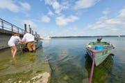 Beim Schlipf bei der Ermatinger Stedi wird gerade ein Boot ausgewassert. (Bild: Donato Caspari)