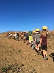 Zusammen mit den Einheimischen transportieren die Projektteilnehmer Sand in Behältern durch die Steppenlandschaft zu den Baustellen. (Bild: PD, Manirisoa, Juli/August 2018)