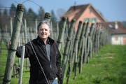 Toni Ottiger vom Weingut Rosenau in Kastanienbaum (Archivbild: Boris Bürgisser).