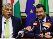 Matteo Salvini (r.) und Viktor Orban am Dienstag in Mailand vor den Medien. (Bild: Keystone/AP/LUCA BRUNO)