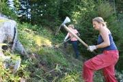 Sie retten den Wald vor der Überwucherung (Bild: PD)