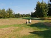 Flächen auf dem Golfplatz Niederbüren, die nicht zum eigentlichen Spielbereich gehören, sind nun teilweise verdorrt. (Bilder: Angelina Donati)