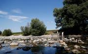 Die Reuss führt zurzeit wenig Wasser. Bild: Stefan Kaiser (Zug, 31.Juli 2018)