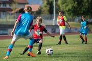 Mit voller Motivation: Die Junioren des FC Horw geben beim Training trotz der Hitze richtig Gas. (Bild: Pius Amrein, Schüpfheim 2. August 2018)