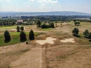 Auf dem Golfplatz Lipperswil im Thurgau herrscht Dürre: Lediglich die Greens sind noch wirklich grün - der Rest ist braun. (Bild: Reto Martin)