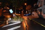 Der Betrunkene verwüstete auf seiner Fahrt eine Verkehrsinsel. (Bild: Kantonspolizei St.Gallen)