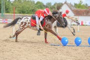Möglichst schnell einen Parcours auf dem Pony oder Pferd absolvieren: Darum geht's bei den «Pony Mounted Games». (Bild: PD)