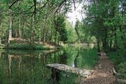 Ein Naturidyll: Die Weiher im Feldenmoos. (Bild: PD)