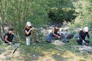 Die Weiden werden von den Frauen zu Stecklingen zugeschnitten. (Bild: Paul Gwerder, Bürglen, 3. August 2018)