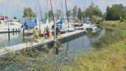 Die Ölwehr holt den ausgelaufenen Diesel aus dem Horner Hafen West. (Bild: BRK News)