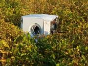 Fehl am Platz: eine Waschmaschine auf einer Wiese. (Bild: PD)