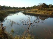 Ein Teil seines Landes, wo bald ein Tierpark entstehen soll. (Bild: PD)