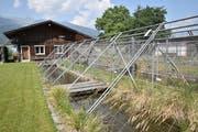 Die Aufzuchtanlage Böschengiessen des Fischereivereins Werdenberg beherbergt nun Gäste aus anderen Gewässern. (Bild: Heini Schwendener)
