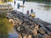 Diessenhofer Fischer fischen den Bereich der Geisslibach-Mündung ab. Die Fische werden in den Oberlauf des Bachs verfrachtet. (Bild: PD)