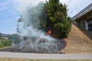 Rund 200 Quadratmeter brannten ab. (Bild: Kapo SG)