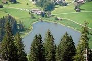 Für Anblicke wie diese reisen Touristen ins Obertoggenburg. Im Bild liegt der Schwendisee, inmitten der Flachmoore. (Bild: PD)