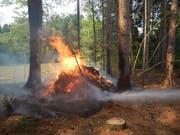 Der brennende Asthaufen im Wald bei Heimenhofen TG konnte von der Feuerwehr rasch gelöscht werden. (Bild: Kapo Thurgau)