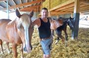 Landwirt Roland Hugentobler steht neben einem Gandenbrotpferd im offenen Stall. (Bild: Mario Testa)