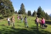 Rund 80 Personen liessen sich von den Ortsgemeinde-Vertretern über die Vorzüge des Waldes informieren. (Bild: Martin Trendle)