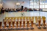 Stadtluzerner Turnhallen werden auch für Wettkämpfe gemietet. Im Bild: Kunstradfahren in der Turnhalle der Schule Hubelmatt (Bild: Philipp Schmidli, 21. Januar 2017)