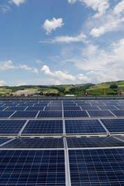 Eine Photovoltaikanlage auf dem Dach der V-Zug. Bald sollen auch Autobahnen mit Solarpanels bestückt werden. (Bild: Stefan Kaiser)