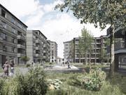Sollen Ballwils Zentrum prägen: Vorne die Wohnhäuser mit fünf Etagen, hinten jene mit sieben respektive sechs Stockwerken. (Visualisierung: PD)