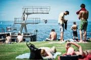 Der Sprungturm musste dieses Jahr im Strandbad Rorschach gesperrt werden. Die Saison lief dennoch gut. (Bild: Luca Linder (Juni 2014))