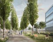 Im Bereich der Horwer Technikumstrasse könnten die Freiräume des Hochschul-Campus nahtlos in die Strassenräume der künftigen Süd-Allee übergehen.