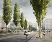 Ziemlich städtisch soll sich die Süd-Allee dereinst im Abschnitt zwischen Arsenalstrasse und Mattenhof-Kreisel präsentieren.