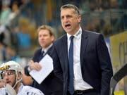 Bekenntnis für die Zukunft: Fribourg-Gottéron verlängerte den Vertrag mit dem kanadischen Chefcoach Mark French bis zum Ende der Saison 2020/21 (Bild: KEYSTONE/JUERGEN STAIGER)