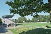 Die Ruhe vor dem Cupspiel: Auf dem Sportplatz Brühl erwartet der FC Muri am Sonntag mindestens 2500 Zuschauer. (Bild: Eddy Schambron/AZ)