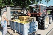 Ein Obstbauer bringt rund 700 Kilogramm Äpfel in die Mosterei der Niba Getränke AG. Aus diesen wird später etwa 560 Liter Süssmost gewonnen, der in der Mosterei Möhl in Arbon zur allbekannten Apfelschorle verarbeitet wird. (Bild: Corinne Bischof)