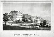 Das Stickereigebäude auf dem Friedberg von 1870 (rechts) wurde rund 50 Jahre später zum Gymnasium. (Bild: PD)