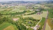 Das Gebiet der ehemaligen Kiesgrube Espel gehört seit Juni Pro Natura. (Bild: Urs Bucher)