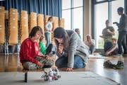 Kinder und Eltern programmieren auf dem iPad selbständig ihre Roboter für die vorgesehene Strecke. (Bild: Hanspeter Schiess)