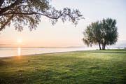 Der Sonnenaufgang am Bodenseeufer in Arbon. (Bild: Thi My Lien Nguyen)