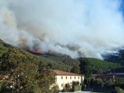 Der Wald brennt in Calci nahe Pisa. (Bild: Keystone/EPA/GABRIELE MASIERO)