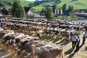 Auf dem Kronenplatz in Urnäsch versammelte sich Vieh und Volk. (Bild: Claudio Weder)
