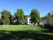 Auf der Sömmerliwiese im Lachen-Quartier soll bald ein Provisorium für die Tagesbetreuung stehen. (Bild: Reto Voneschen)