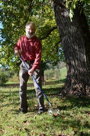 Hans Oppliger, Präsident des Vereins Nussdorf, bei der Nussernte im Sortengarten in Frümsen. (Bild: Jessica Nigg)