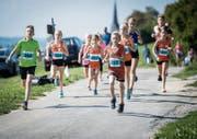 Die Schüler starteten beim Herderner Lauf in einer eigenen Kategorie. (Bild: Reto Martin)