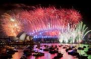 Im Hafen von Sydney. (Bild: Brendan Esposito/AAP via AP)