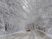 In der Ukraine sind in den vergangenen Wochen 60 Menschen wegen der Kälte gestorben. In Jakutien in Sibirien warnten die Behörden vor langen Autofahrten. Man solle auf Fahrten durch abgelegene Gebiete bei der Kälte verzichten, hiess es. (Bild: KEYSTONE/EPA/MARKIIAN LYSEIKO)