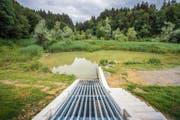 Der Damm mit Retentionsbecken im Rütiweier wurde im Sommer vergangenen Jahres fertiggestellt. (Bild: Urs Bucher (5. Juli 2018))