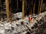 Im Wald gelandet ist eine Lenkerin mit ihrem Kleinbus in Ennetmoos NW. (Bild: Kantonspolizei Nidwalden)