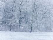 Die Schweiz bleibt die nächsten Tage weiss - zumindest in den Bergen wird viel Neuschnee erwartet (Symbolbild, Aufnahme vom 5. Januar 2019 bei Schaffhausen). (Bild: KEYSTONE/MELANIE DUCHENE)