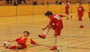 Der FC Haag war im zweiten Turnier der Junioren E2 der Konkurrenz um einen Schritt voraus, schoss in fünf Partien 13 Tore und krallte sich mit vier Siegen und einem Remis den Turniersieg. (Bild: Robert Kucera)