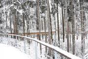 Wie aus einem verwunschenen Winterland entsprungen präsentiert sich der tief verschneite Baumwipfelpfad Neckertal. (Bild: Urs M. Hemm)