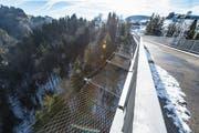 """""""Suizide sind oft Kurzschlusshandlungen"""", sagen Experten. Brücken mit Netzen zu sichern, gilt deshalb als wirksame Präventionsmassnahme."""
